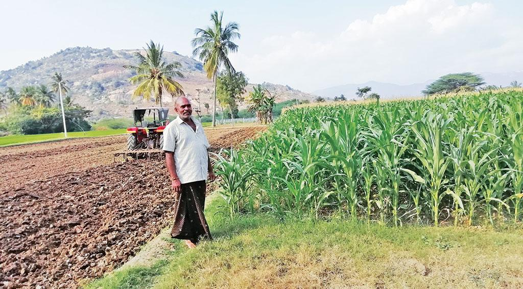 K Bhupathi Reddy, a maize farmer from Mallayapalli village in Andhra Pradesh, has already wasted `20,000 trying to contain Fall Armyworm  (Photo: Ram Mohan G)