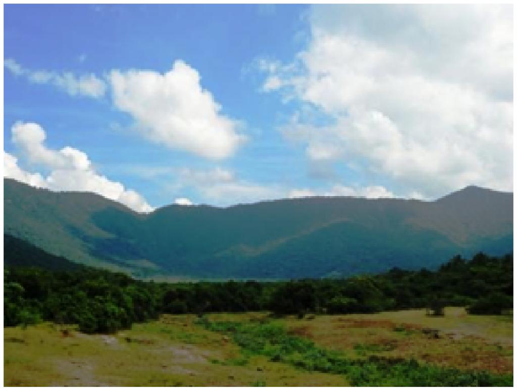 Pachamalai Hills. Photo: V Sundararaju