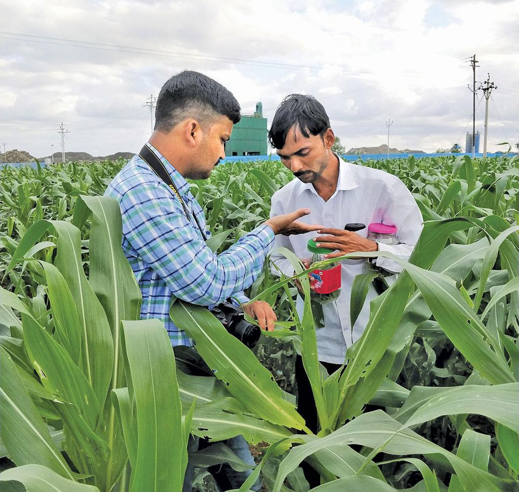 In Maharashtra, Fall Armyworm was first detected on August 29, 2018, in Ganesh Babar's (right) maize field at Tandulwadi village in Solapur district (Photo: Gajanan Khergamker)