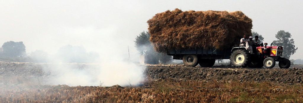 Paddy stubble burning in Panipat, Haryana. Photo: Vikas Choudhary
