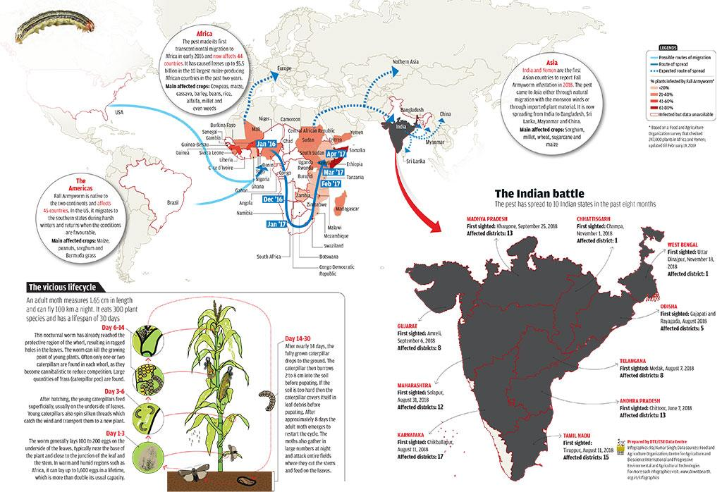 Infographics: Raj Kumar Singh; <br> Data sources: Food and Agriculture Organization, Centre for Agriculture and Bioscience International and Progressive Environmental and Agricultural Technologies