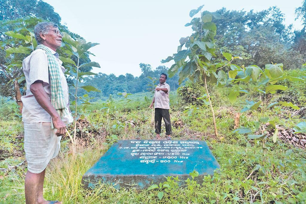 ओडिशा के ढेंकानाल जिले में स्थित गुरजंगा गांव में कुछ महीने पहले घना जंगल था जिस पर गांव के लोग निर्भर थे लेकिन अब इस जंगल को वन विभाग ने अपने अधीन कर लिया है