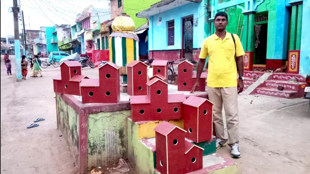 In Odisha's seaside village Puranabandhi in Ganjam district in 2008 Sahoo began installing earthen pots and wooden boxes with holes to serve as nests for the birds. Photo: Ashis Senapati