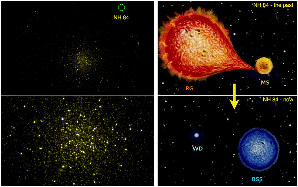 Astrosat image of Globular Cluster NGC 5466 with NH 84 marked (top left); zoomed-in version (bottom left). Artistic representation of NH 84 showing how MS swallowed up outer layers of its companion in its enlarged Red Giant phase (top right). The companio