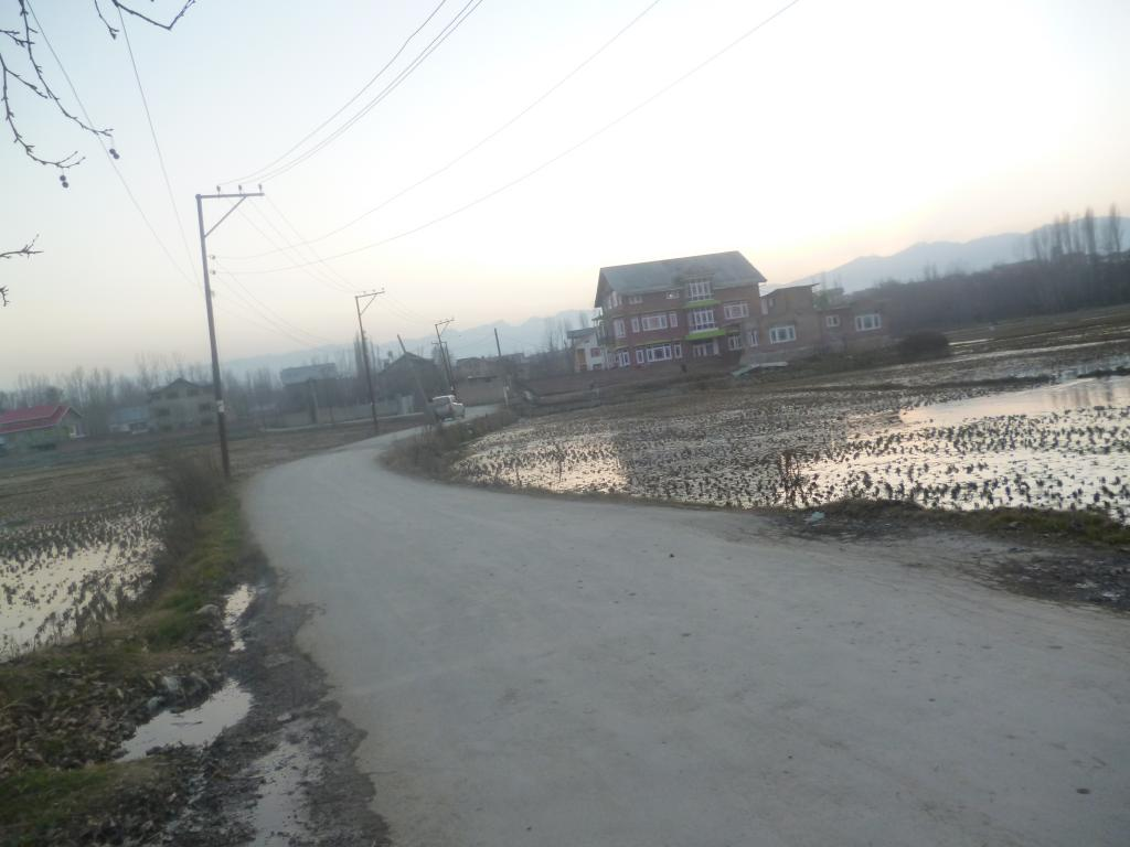 Shrinking farmlands in Srinagar, Photo: Riyaz Wani