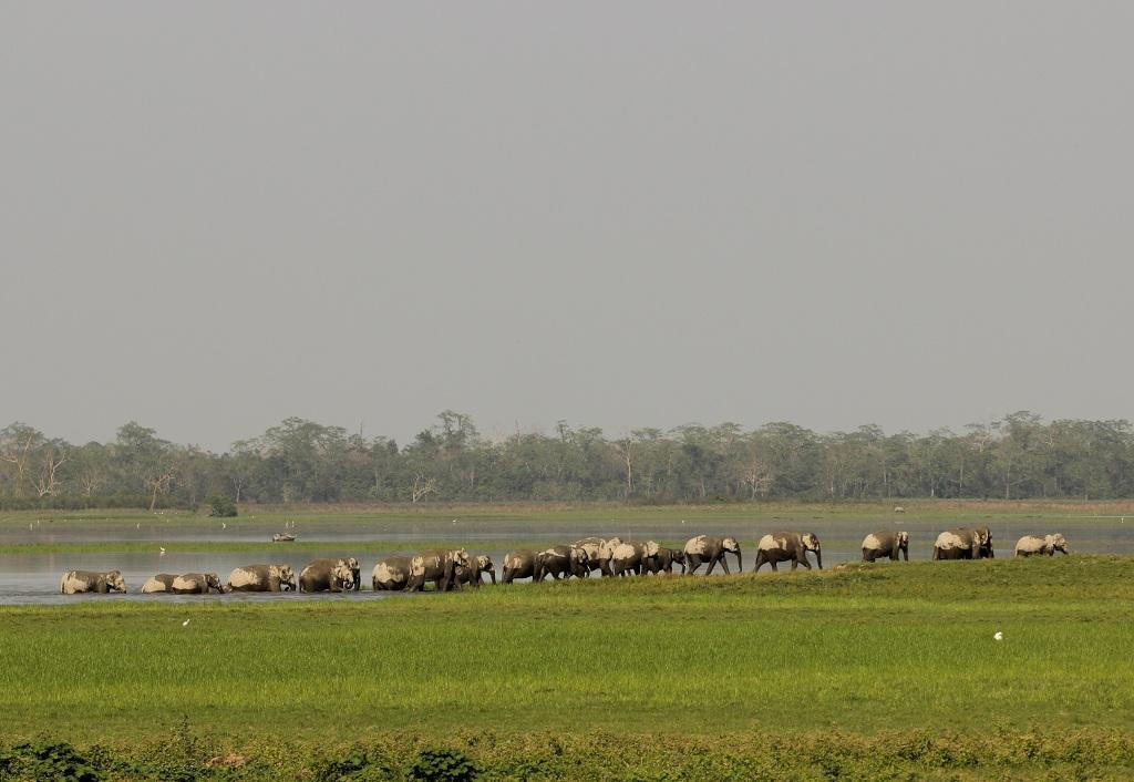Photo Credit : Kumar Sambhav Shrivastava