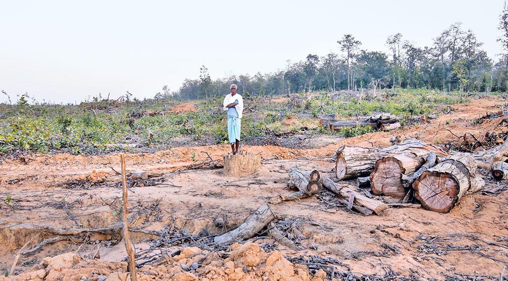 वनवासियों पर मंडरा रहा है जंगल से बेदखल किए जाने का खतरा