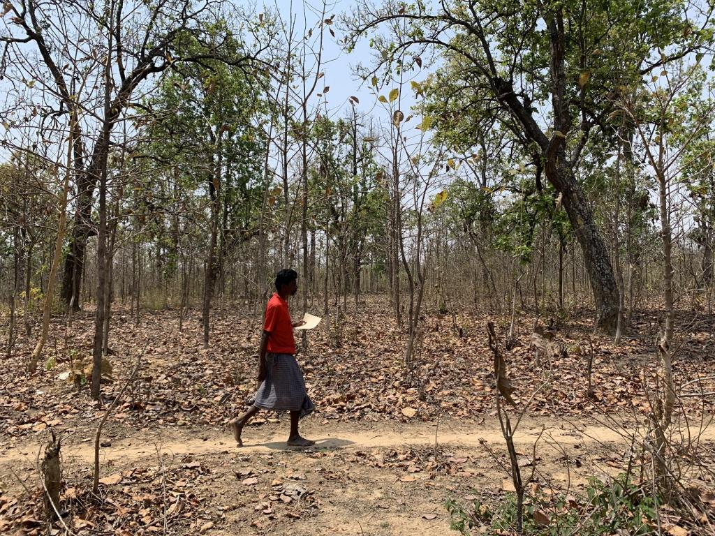 According to the Chhattisgarh Schedule Caste and Schedule Tribe Development Department data, of the potential 27,000 FRA claimants, only around 15,000 claims have been approved in Korea district. Photo: Ishan Kukreti