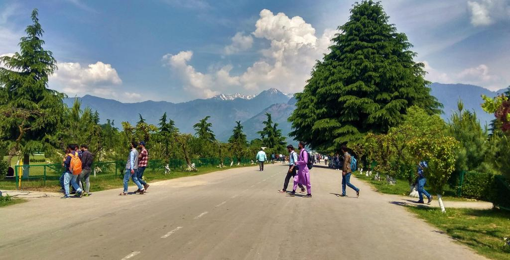 The campus at Kashmir University, without vehicles. Photo taken by a Kashmir University student