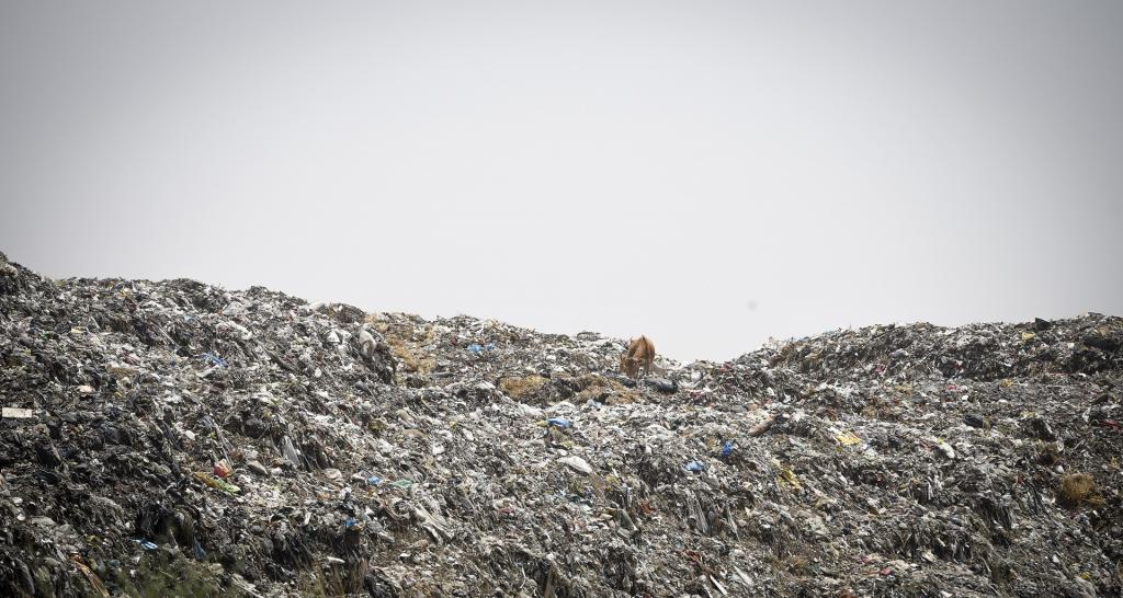 "Prayagraj, where the Kumbh is held, has only one solid waste treatment plant at Baswar village, which according to a report submitted to the NGT is lying ""practically closed since September 2018"". A huge mountain of waste could be seen behind the boundary wall of that plant, untreated and uncovered. Photo: Adithyan PC"