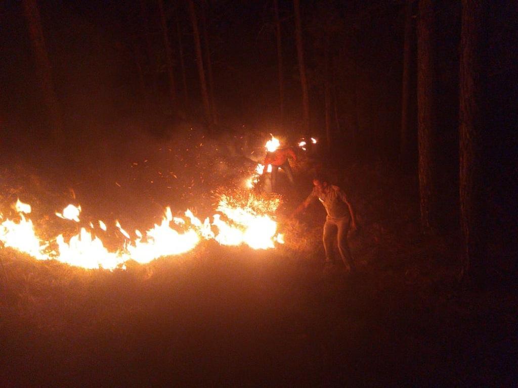 दिकवाली वन पंचायत में लगी आग : फोटो साभार - उत्तराखंड वन विभाग