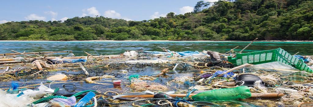 238 tons of plastic waste found on remote Indian Ocean islands. 