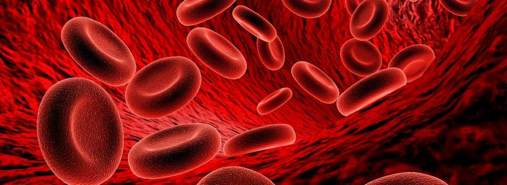Severe anaemia declines in many states: Study. Photo: Getty Images