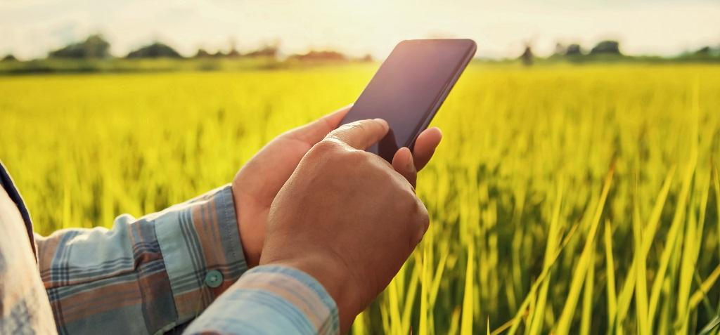 Smartphones that can reshape rural, agricultural areas. Photo: Getty Images