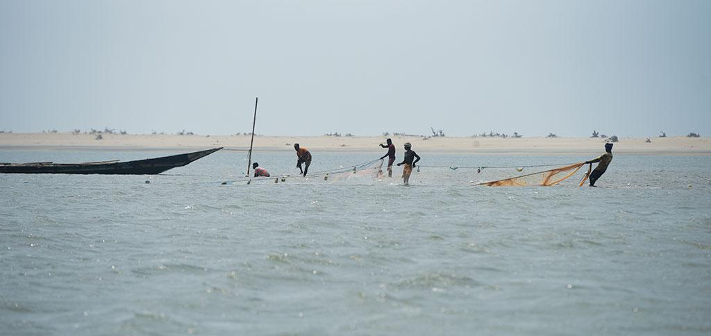 More mouths on the Chilika will disturb the delicate balance of the ecosystem and reduce fish production
