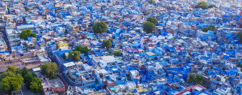 A panoramic view of blue-painted houses  in Jodhpur, close to the Thar desert. Using lighter shades to paint houses can reflect heat. Photo: Getty Images