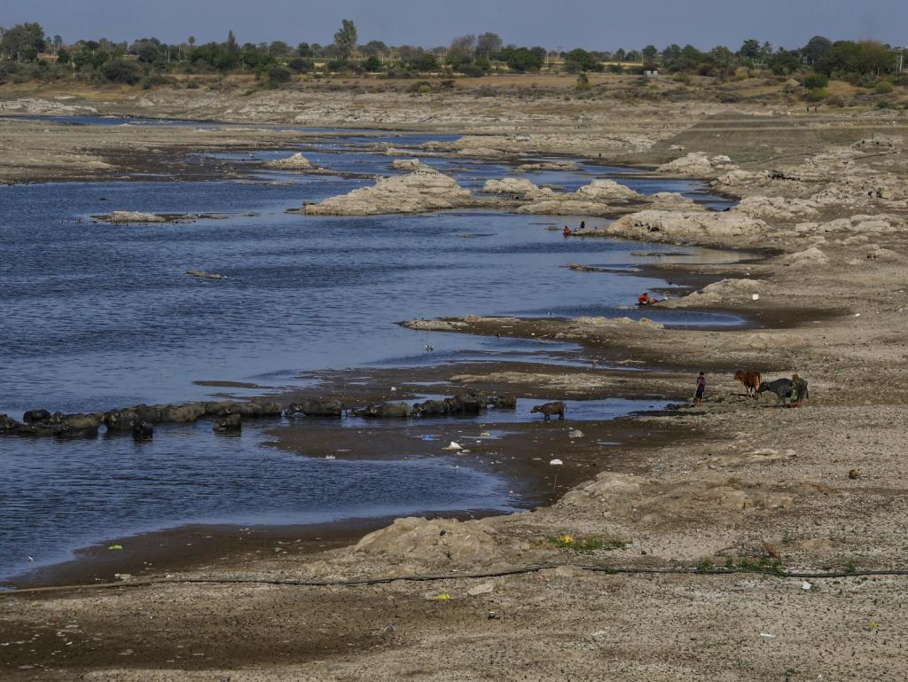 Gujarat's Fofal river, a source of irrigation and other water needs for a section of drought-prone Saurashtra region, is drying up. Photo: Vikas Choudhary