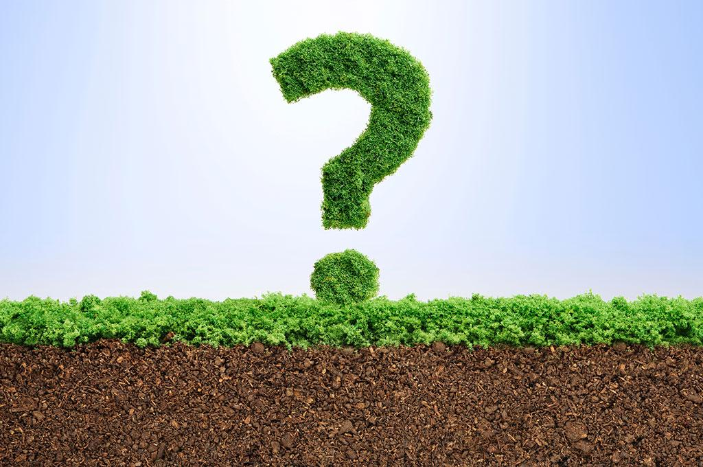 भविष्य पर प्रश्न चिह्न