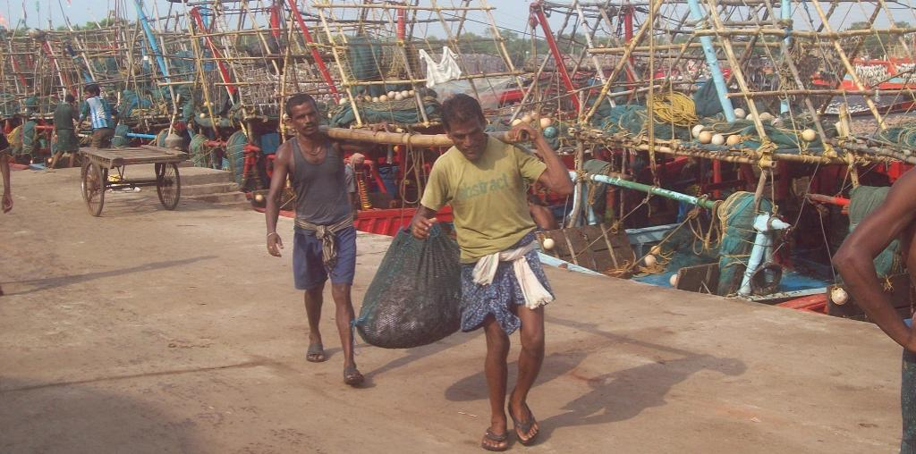 A view of fishing harbour at Paradip, Odisha
