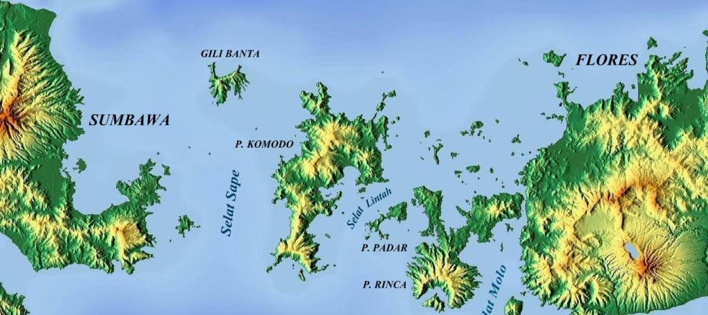 The Komodo island, as shown on this map, is located in the east of the Indonesian archipelago, between the islands of Sumbawa and Flores. It, along with the nearby island of Rinca as well as a few other islands, is home to the Komodo National Park. Photo: Wikimedia Commons