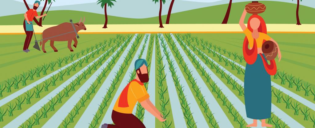 Doubling Indian farmers' income wil;l be tough. Photo: Getty Images