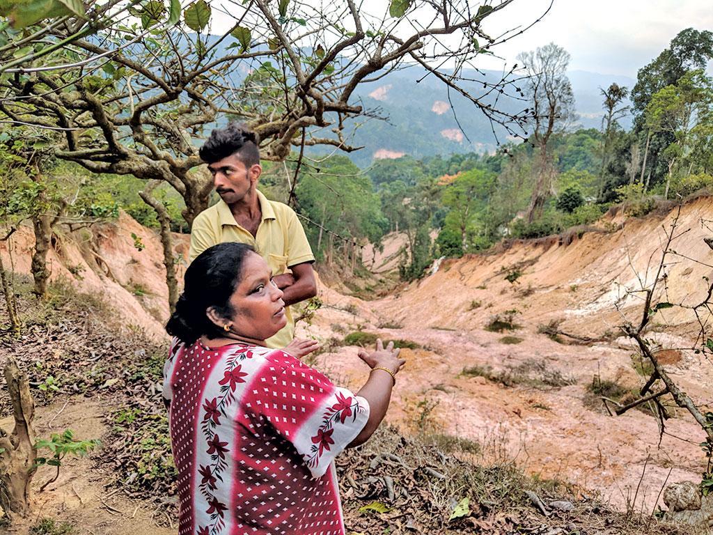 Mindless growth of coffee plantations caused landslide in Kodagu, Karnataka