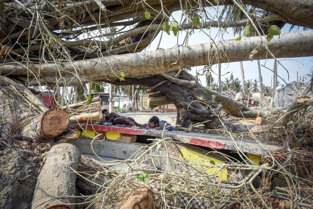 Villagers in Thengipada in Puri district resting atop a temple that was destroyed by trees uprooted by fierce winds during Cyclone Fani. Photo: Adithyan P C