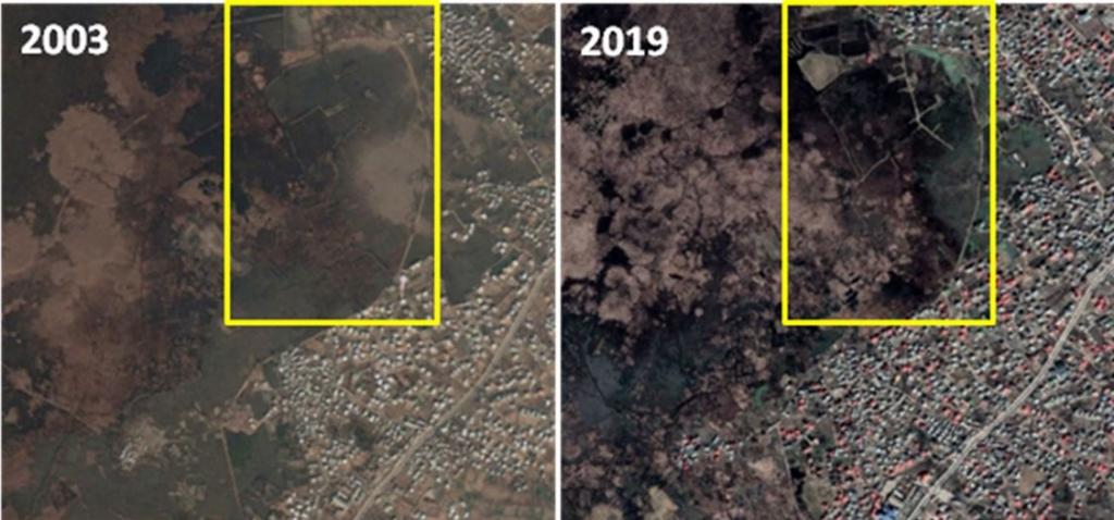 Change in land use in Narkara wetland between 2003 and 2019. Photo: ISW