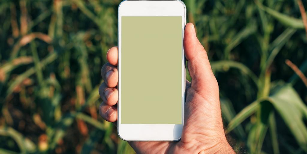 It is possible to monitor and control the irrigation of crops through a smartphone. Photo: Getty Images