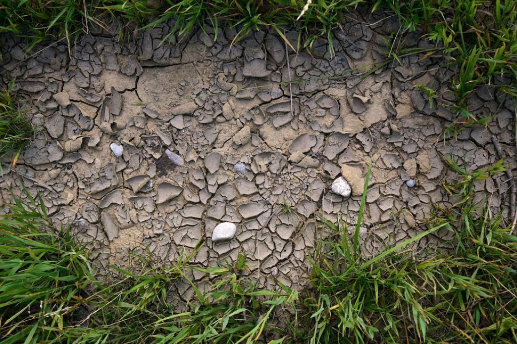 तेजी से बदल रहा है पृथ्वी का तापमान, जहां जुलाई को रिकॉर्ड किया गया मानव इतिहास का अब तक का सबसे गर्म महीना, वहीं पिछले 140 सालों में कभी भी इतना गर्म नहीं रहा जून