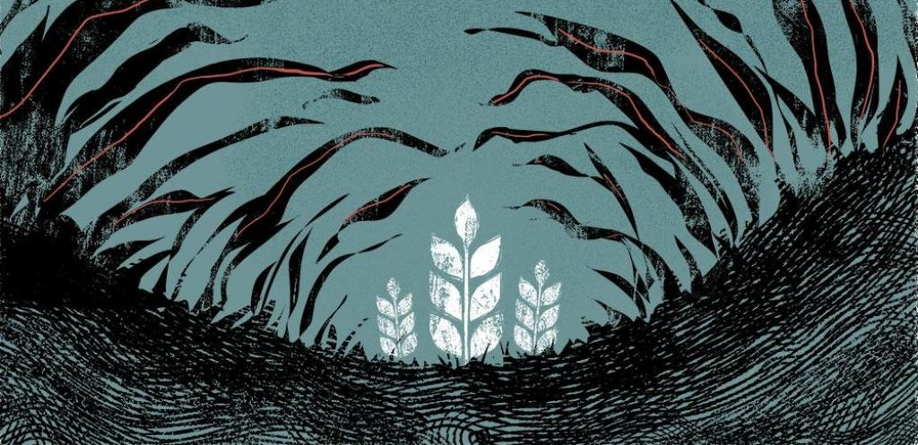 Illustration: Tarique Aziz/ CSE