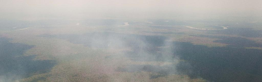 Huge fires are raging across multiple regions of the Amazon Basin. Photo: Guaira Maia / ISA