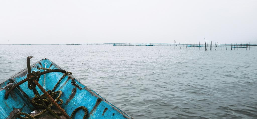 A Malaysian cargo ship was travelling from Malaysia to Bangladesh when it ran aground in Chilika lake because of bad weather. Photo: Getty Images