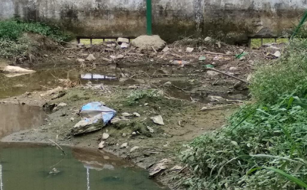शीशमबाड़ा प्लांट से रिस रहा पानी से खेती भी हो रही तबाह। फोटो: त्रिलोचन भट्ट