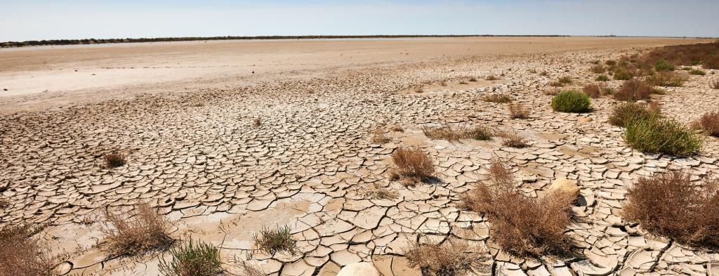 Barren land. Photo: Getty Images