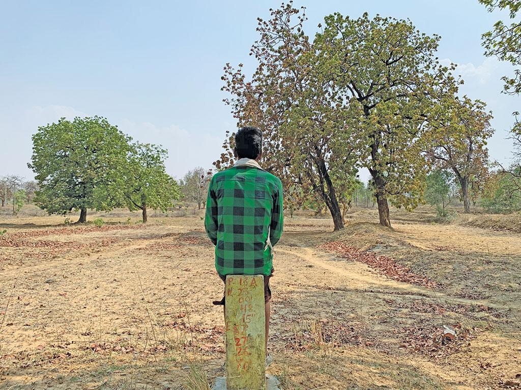 People's forest rights over this 800 ha forest land in Chhattisgarh's Dhanpur village is pending. Yet the government has identified it for compensatory afforestation. Photo: Ishan Kukreti