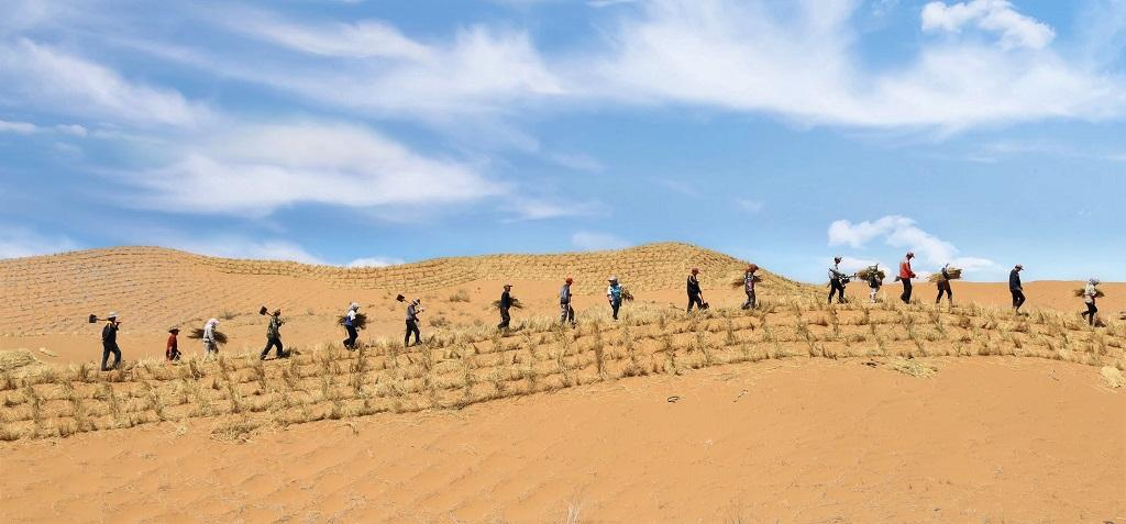Scientists at SDRES worked with communities to save 40-kilometre stretch of rail network crossing through the Tengger desert at Zhongwei. Photo: Alok Gupta