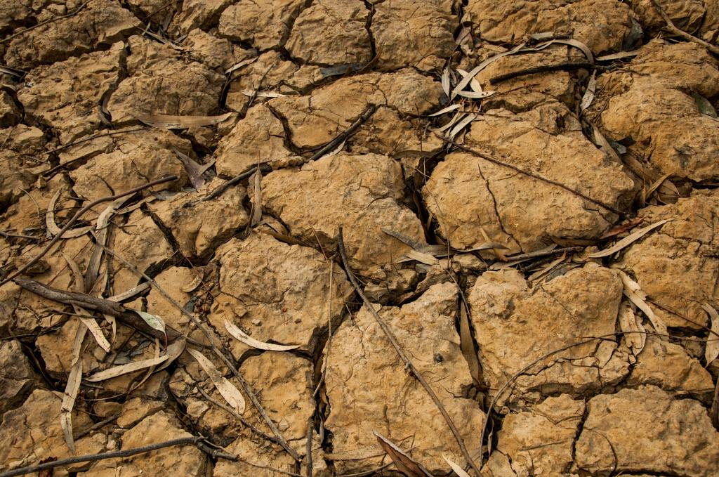 Land affected by drought. Photo: Wikimedia Commons
