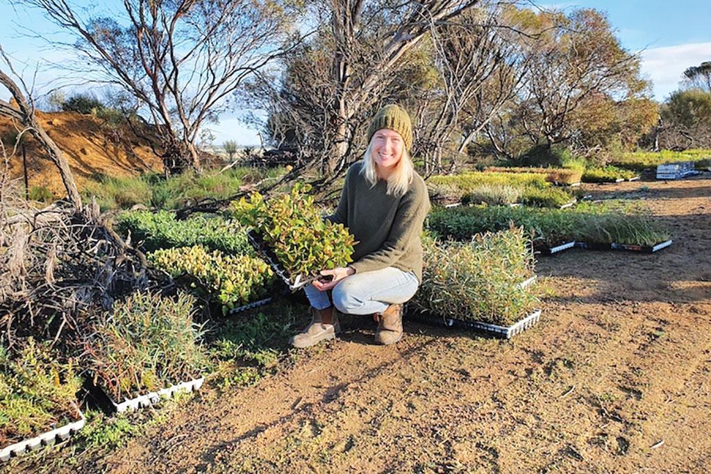 Regenerative farming has helped repopulate the Wheatbelt area