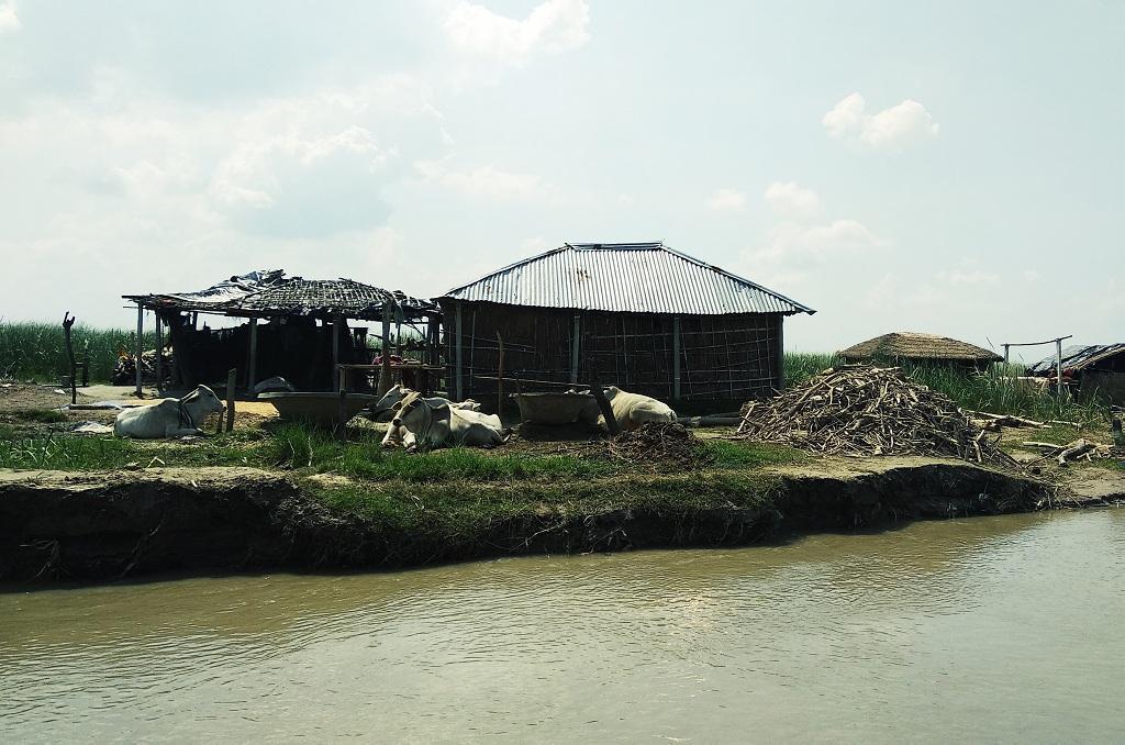 कोसी नदी के किनारे बने घर कभी भी कटाव की चपेट में आ सकते हैं। फोटो: उमेश कुमार राय