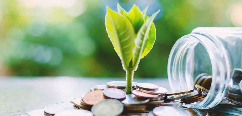 Green finance. Photo: Getty Images