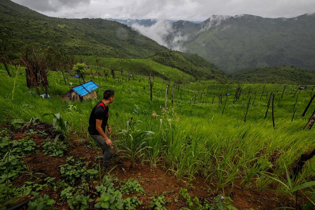 Shifting cultivation exposes state to soil erosion hazards. Photo: Getty Images