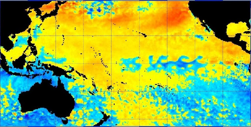 A map displaying a sea surface temperature anomaly in the Pacific Ocean. Photo: National Oceanic and Atmospheric Administration
