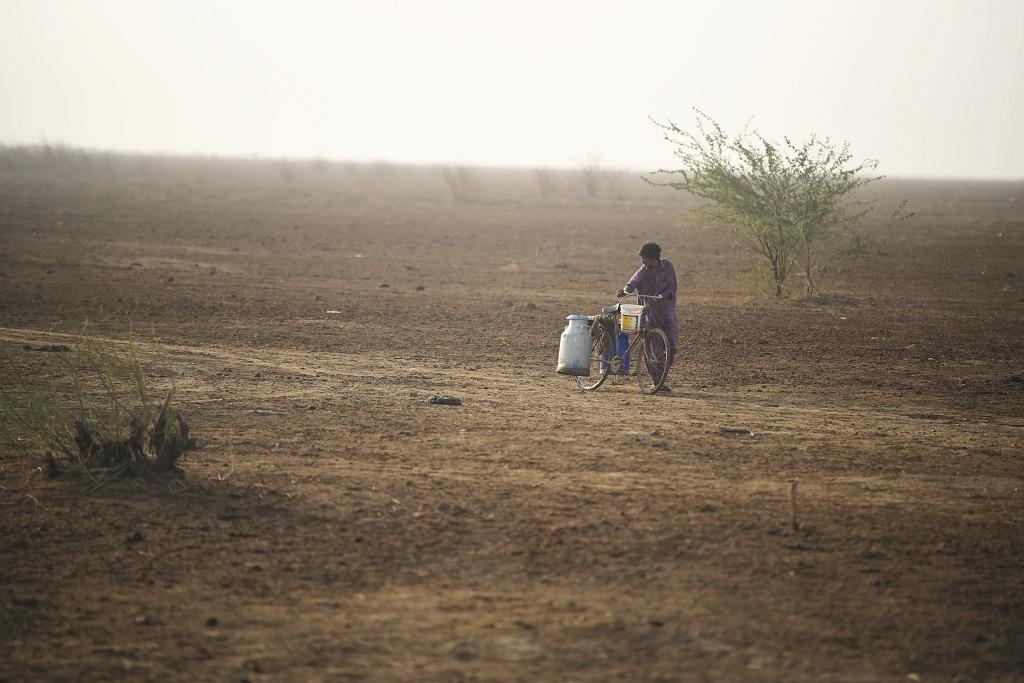 गुजरात उन पांच राज्यों में शामिल है जहां की 50 प्रतिशत से अधिक भूमि मरुस्थलीकरण अथवा क्षरण की शिकार है। फोटो: आदित्यन