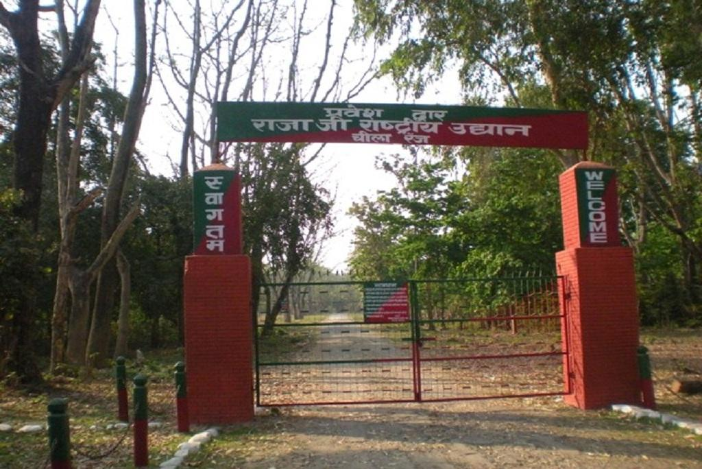 Photo: Website of rajajinationalpark
