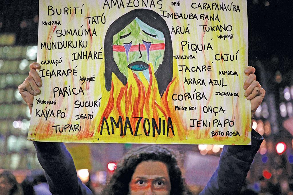 Amazon fires have triggered protests across Brazil and elsewhere in 