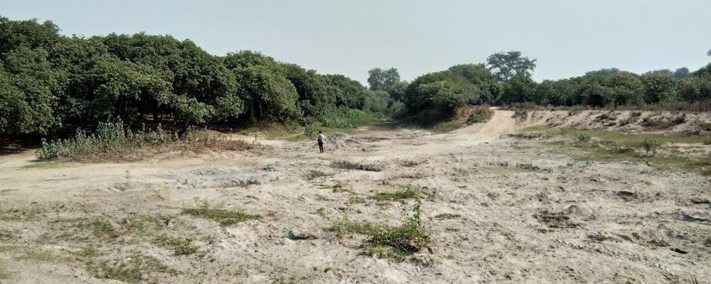 The Gomti river in Purainaghat in August 2019. Photo: Venkatesh Dutta