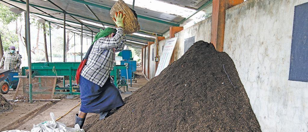 Piling co-compost at the Ketti resource management centre in the Nilgiris district. Photograph: Vikas Choudhary