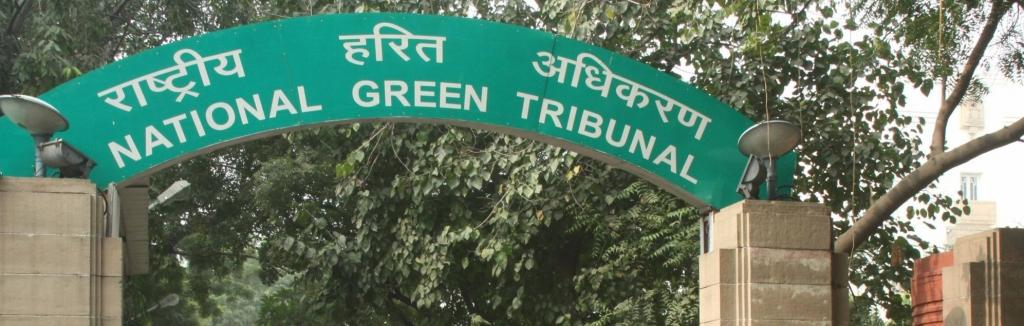 Administrative and financial problems have dogged the National Green Tribunal since the very start. Photo: IANS Tweets @ians_india/Twitter