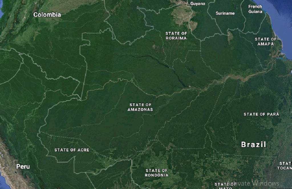 Amazon rainforest. Photo: Google Maps